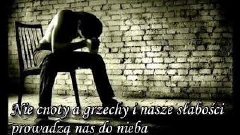 Ks. Piotr Pawlukiewicz - Nie cnoty a grzechy i nasze słabości prowadzą nas do nieba  14-06-2015