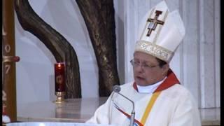 Bp Grzegorz Ryś - Ogień dla nas i całego świata