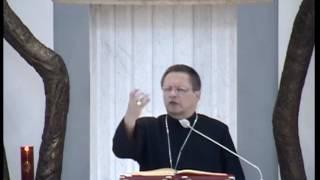 bp Grzegorz Ryś - Strumienie Miłosierdzia - Konferencja 1