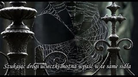 Ks. Piotr Pawlukiewicz - Szukając drogi ucieczki można wpaść w te same sidła