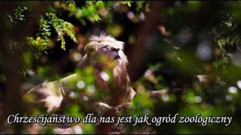 Ks. Piotr Pawlukiewicz - Chrześcijaństwo dla nas jest jak ogród zoologiczny