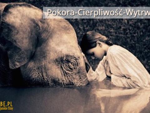 Ks Piotr Pawlukiewicz - Pokora, Cierpliwość, Wytrwałość