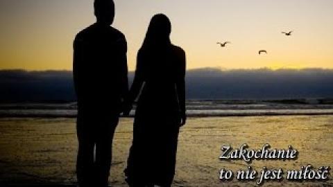 Ks. Piotr Pawlukiewicz - Zakochanie to nie jest miłość  14-02-2016