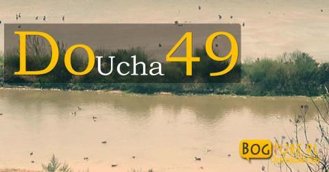 Do UCHA 49